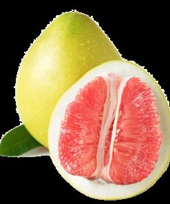 trái bưởi hồng tươi